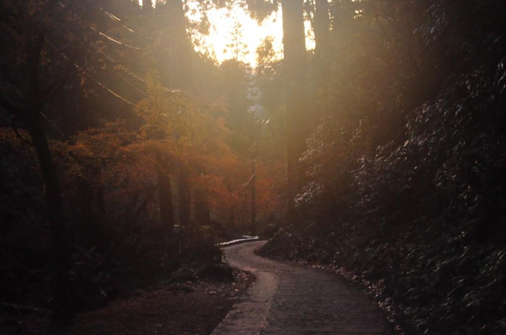登山道入り口付近
