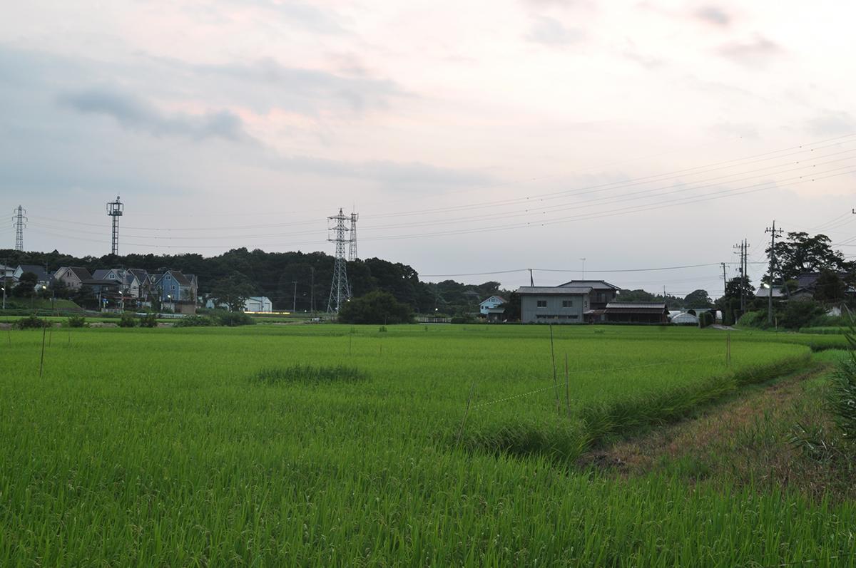 """Shimohiro-oka, Tsukuba"" D5000 35mm f/13"
